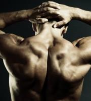 Back Strengthening, Back Workouts, Stronger Back, Hip Bridge, Dog Bird, Lunge, Workout Tips, Fitness Tips, Fitness Advices, Fitness Articles, Lifestyle Mantra